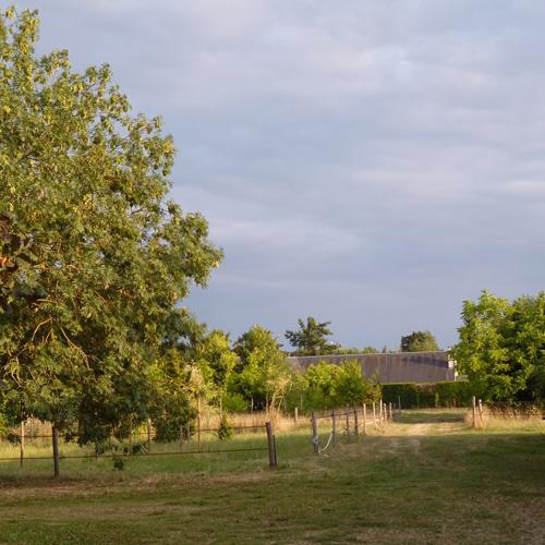 environnement-campagne-ecurie-de-rossinante