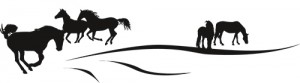 Frise chevaux au paddock