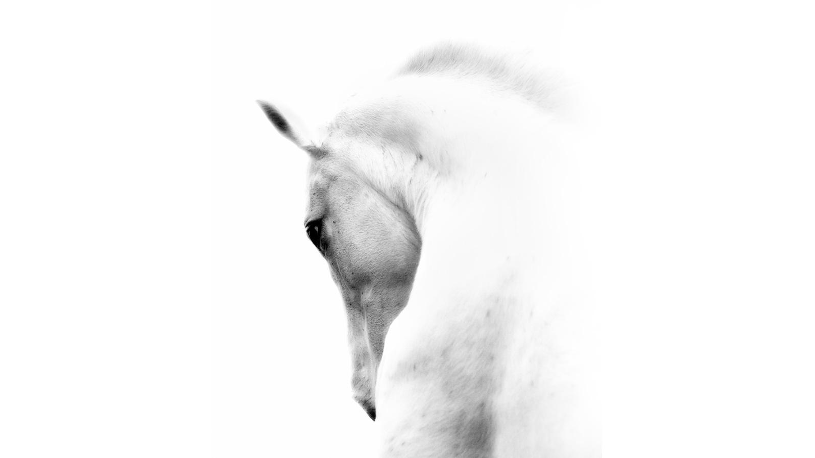 start-image